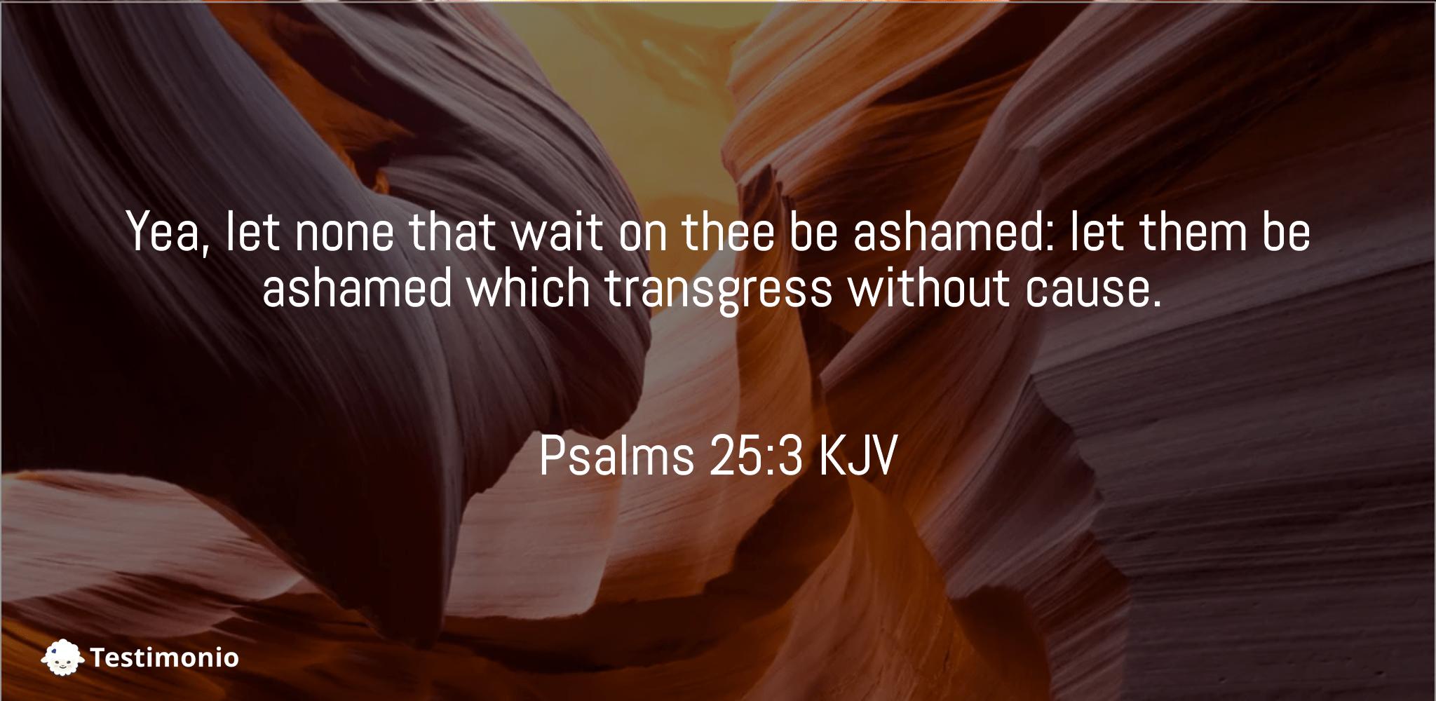 Psalms 25:3