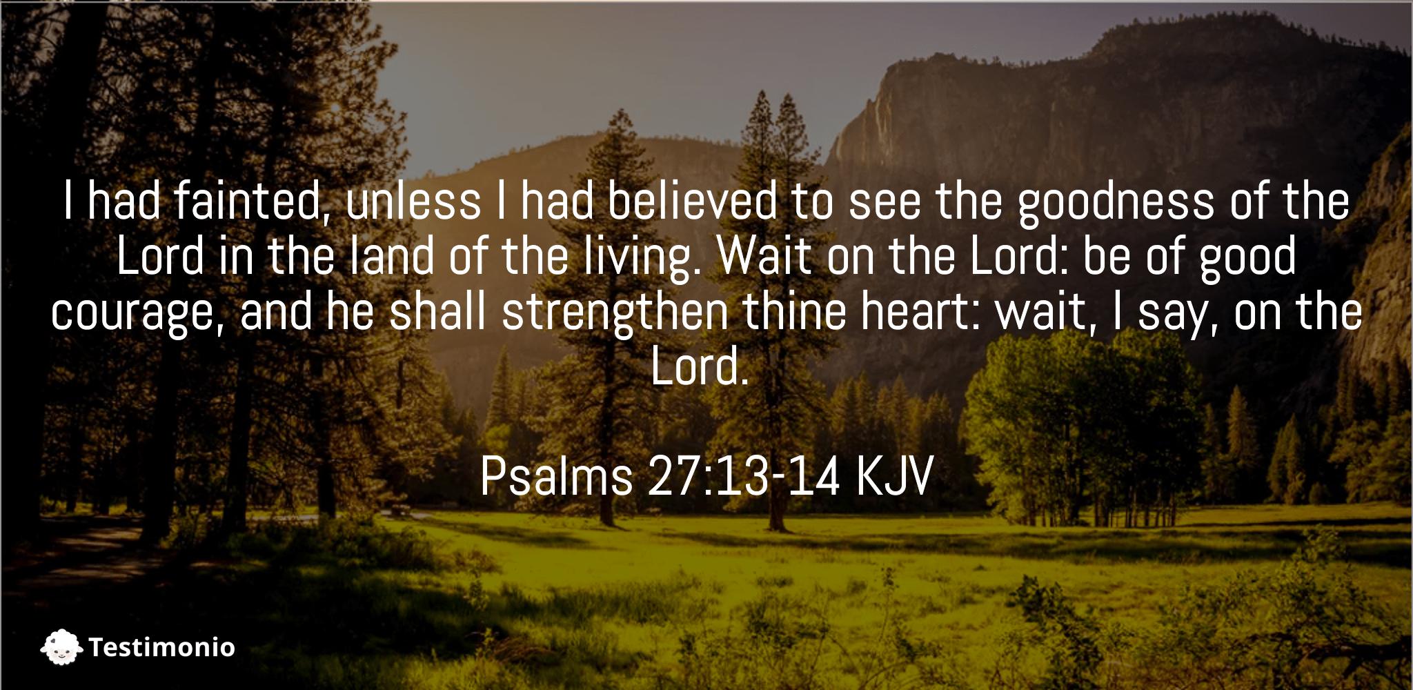 Psalms 27:13-14