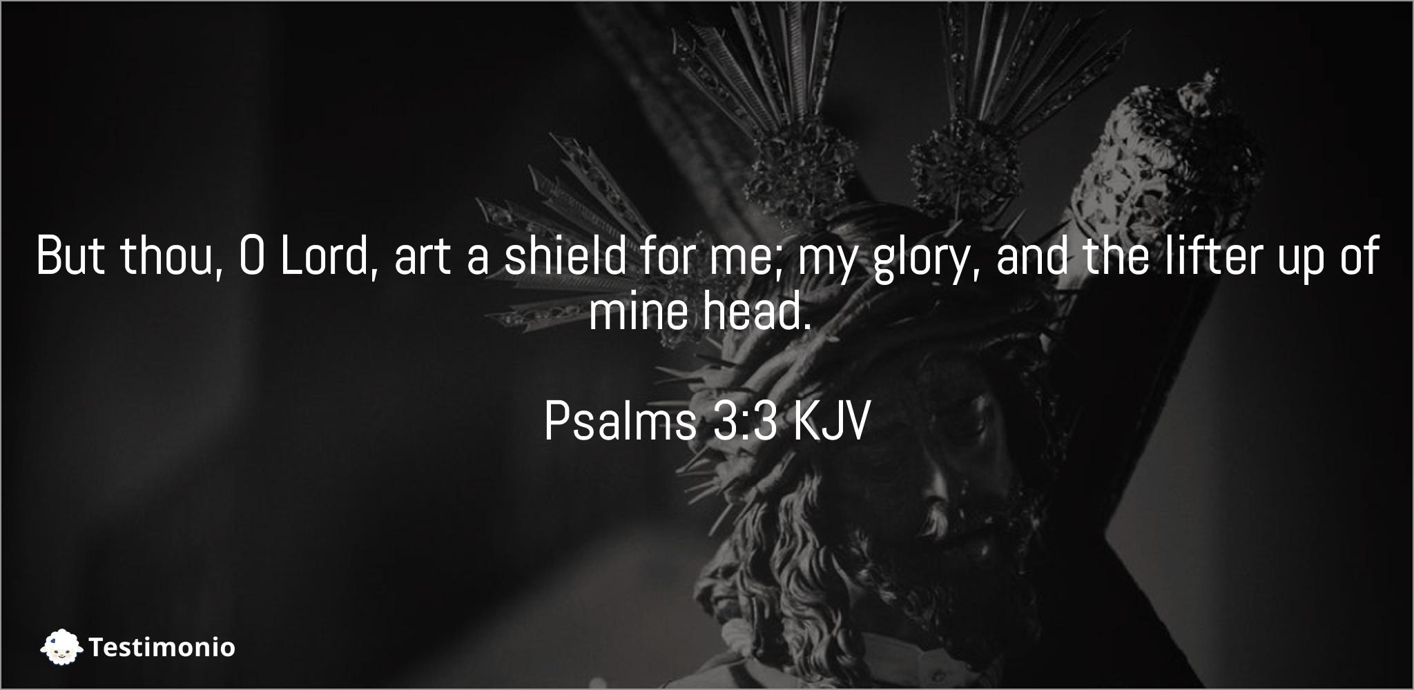 Psalms 3:3