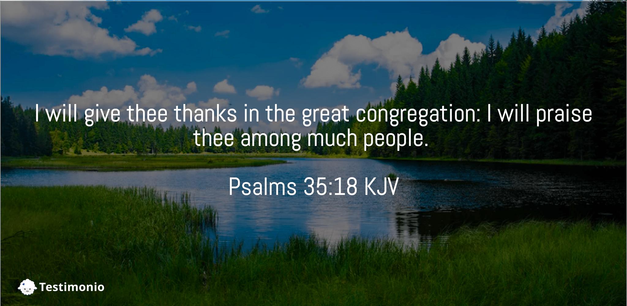 Psalms 35:18