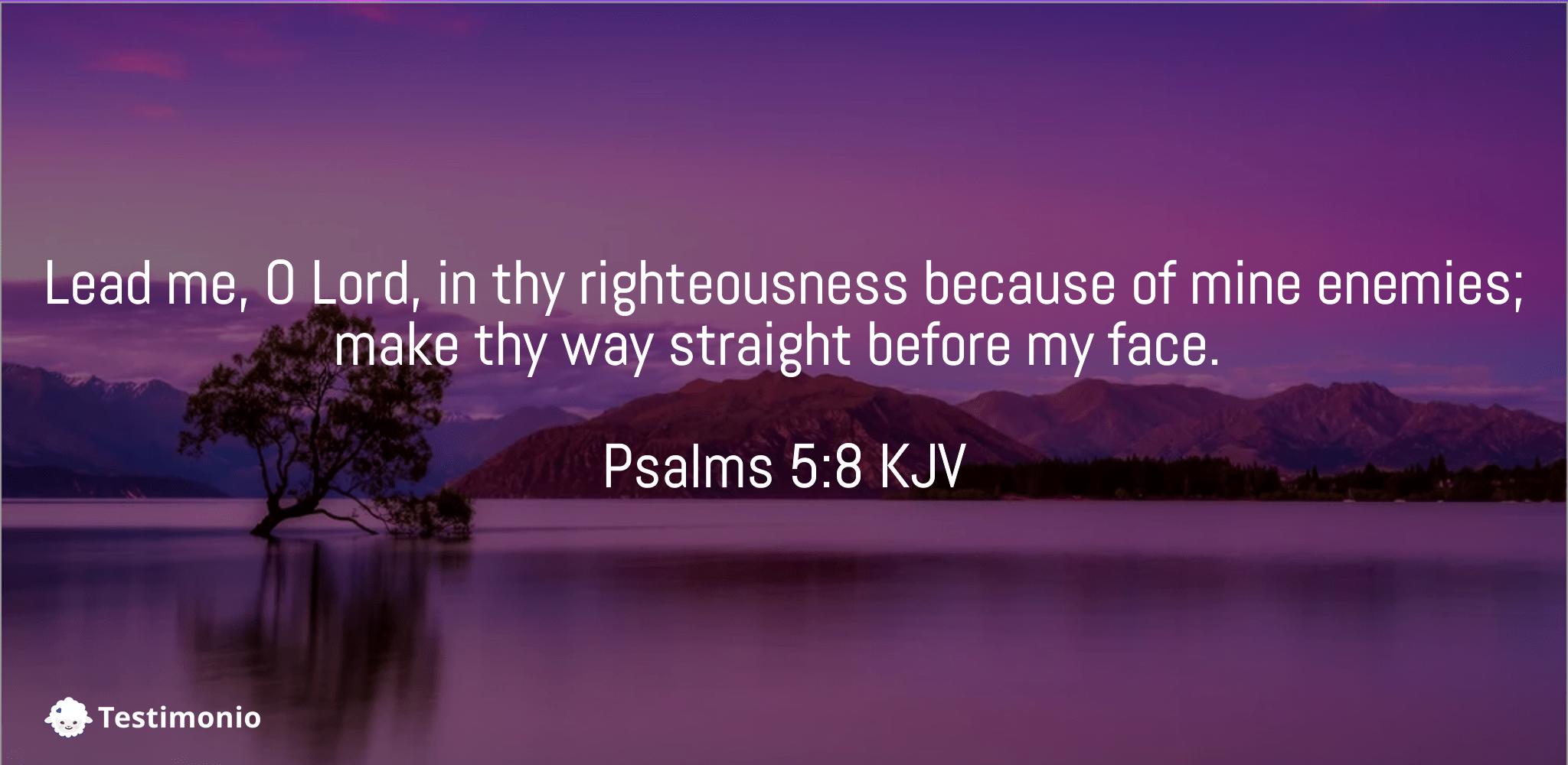 Psalms 5:8