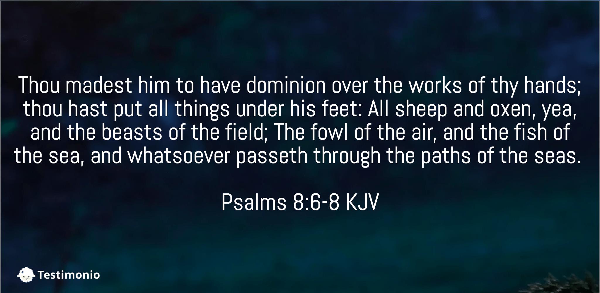 Psalms 8:6-8