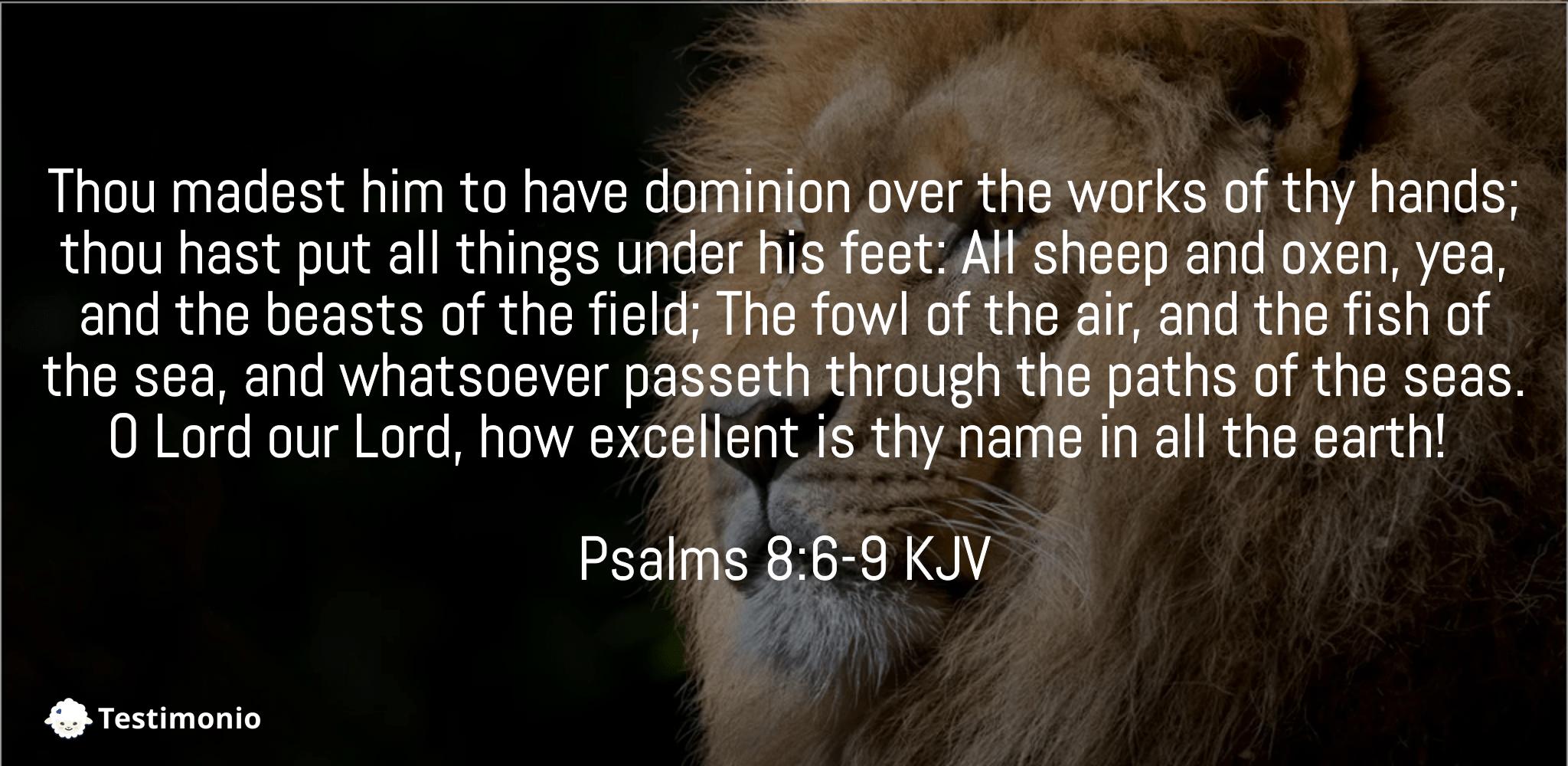 Psalms 8:6-9