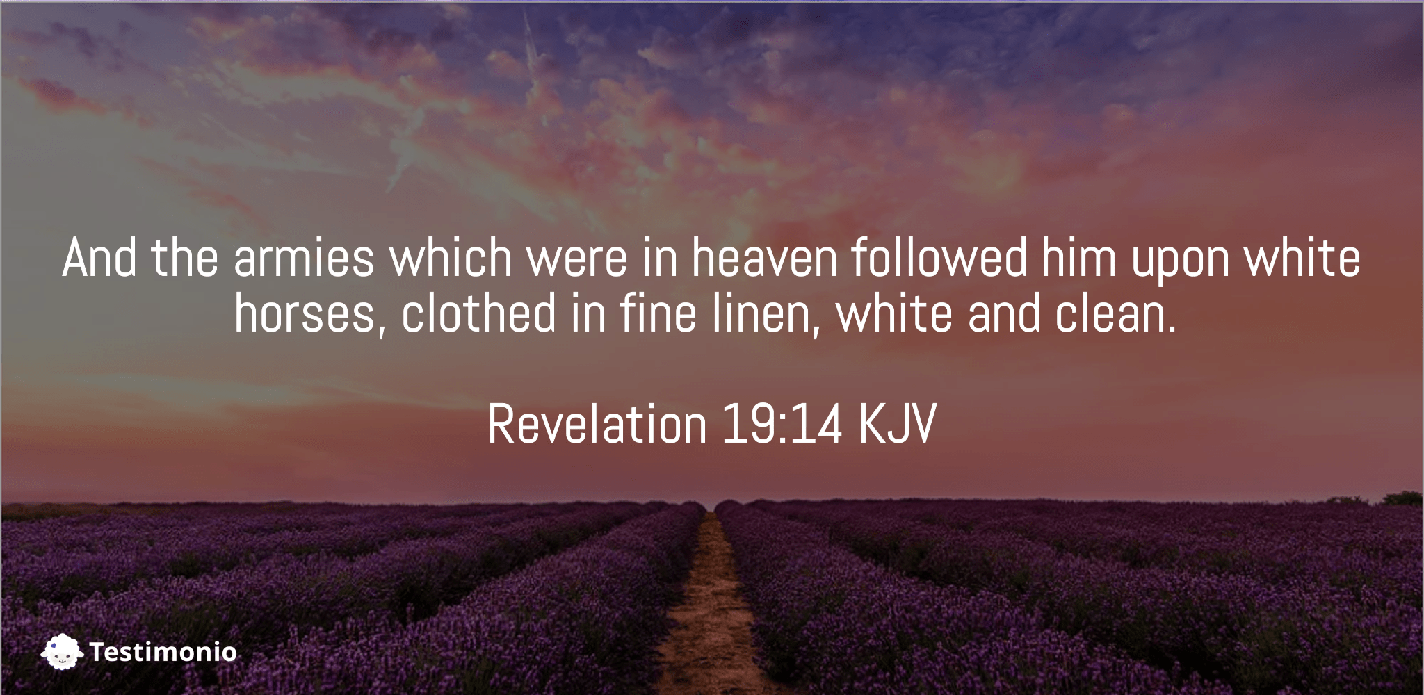 Revelation 19:14