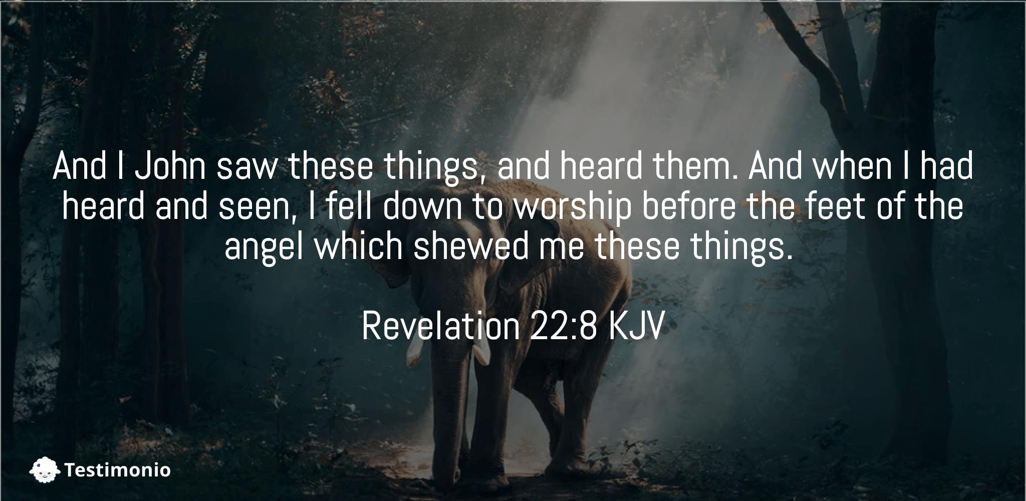 Revelation 22:8
