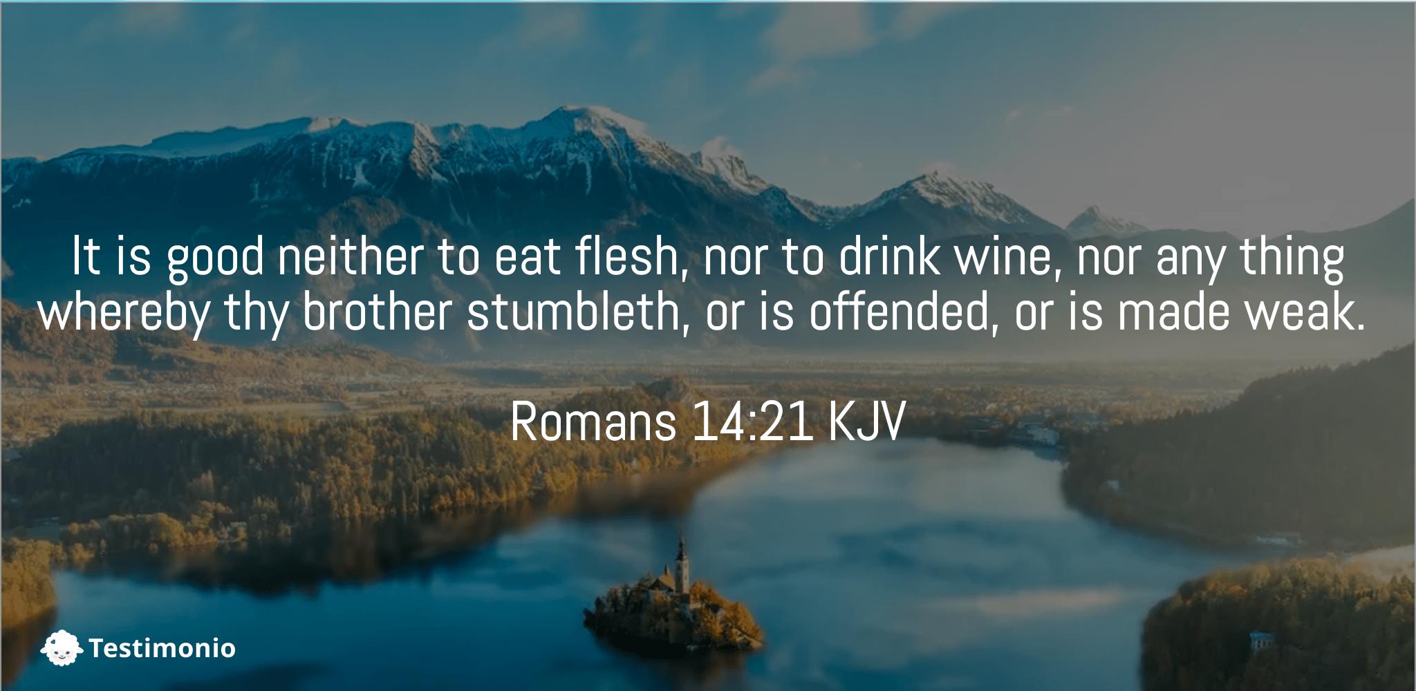 Romans 14:21