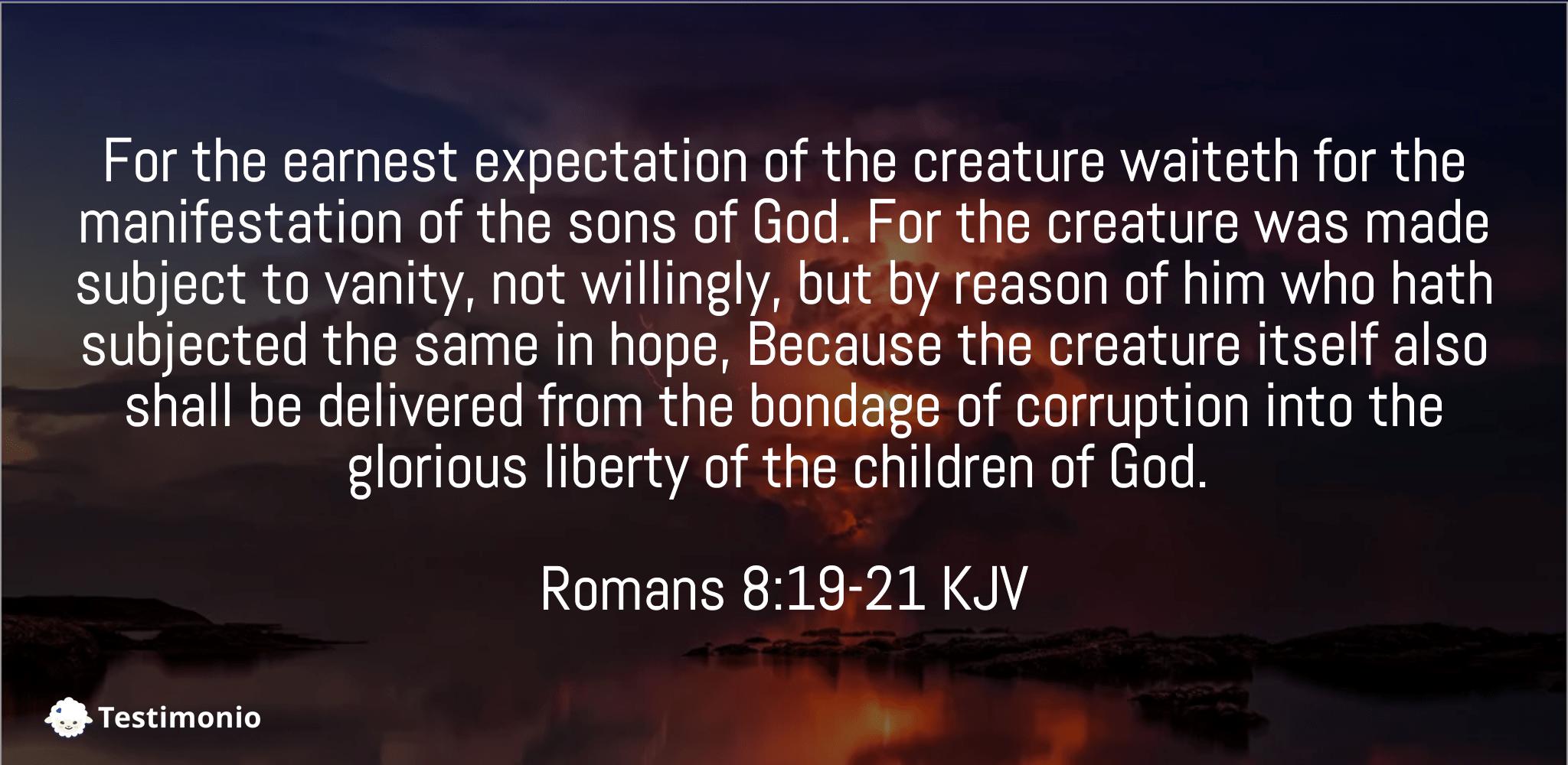 Romans 8:19-21
