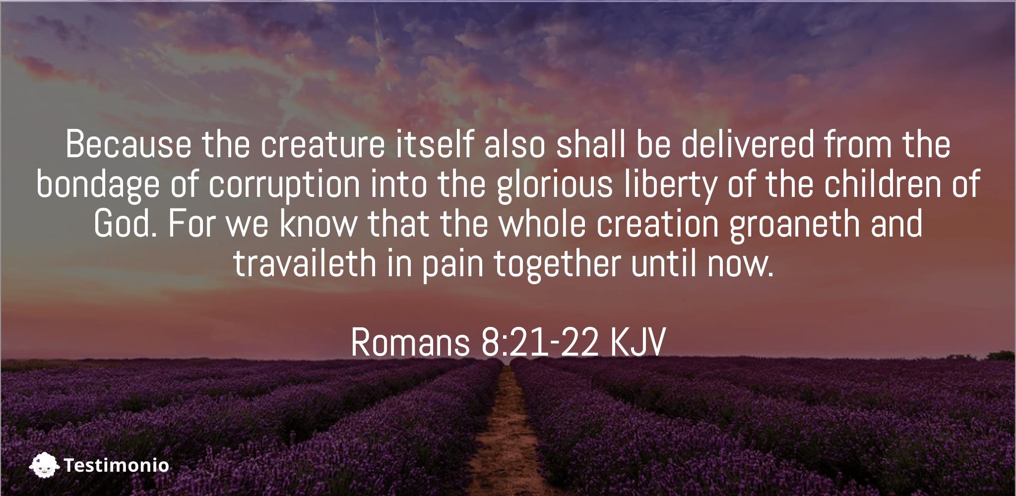 Romans 8:21-22
