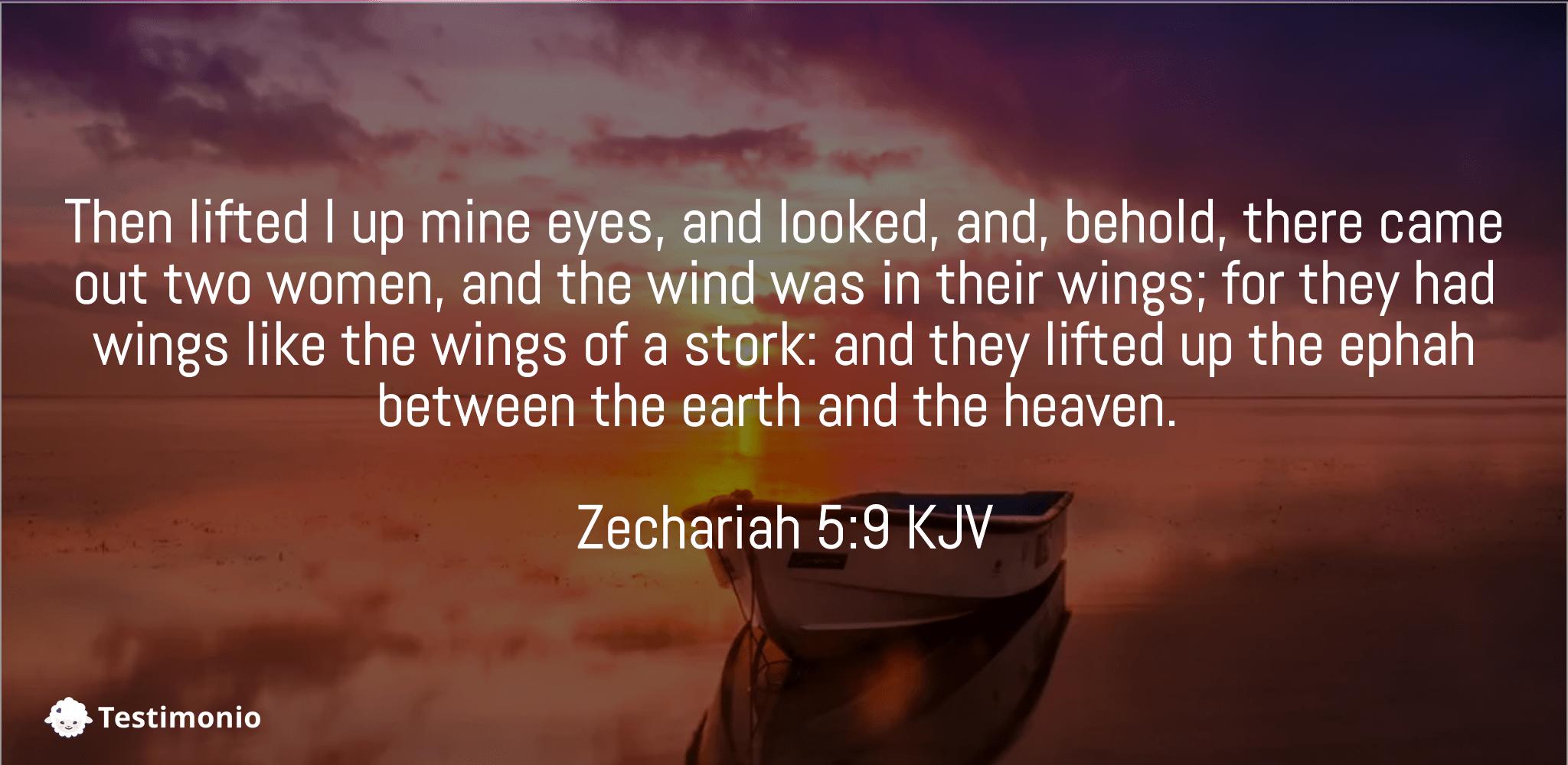 Zechariah 5:9